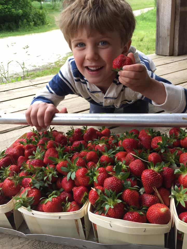 Lucky guy has a strawberry season birthday!